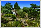 Le Jardin Japonais Sous Le Soleil Brillant