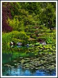 la sérénité au Jardin de Chine