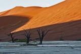Dead Vlei - Namibia