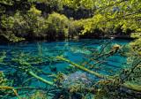 Five-Colored Lake
