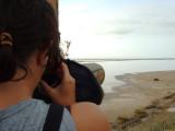 Observación de aves en la punta de la Banya