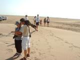 La punta del Fangar ofrece gandes posibilidades de observacion de algunas colonias de aves en el Delta del Ebro