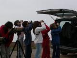 Un grupo de niños observando un grupo de flamencos volando