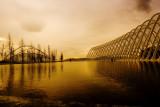Athens Olympic Stadium - Calatrava's Market