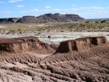 its a dry heat -arizona