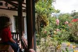 At Alambi Hummingbird Paradise