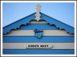 The Dodos nest.!
