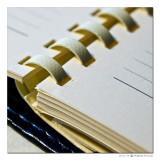 January 23rd: Empty Diary?