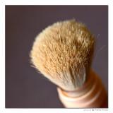January 27th: Brush