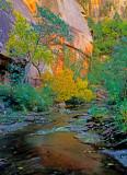 West Fork of Oak Creek Canyon, AZ