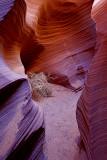 Rattlesnake Canyon, AZ