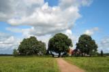 Harpel - Buurkeweg