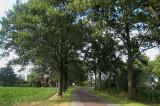 Harpel - Harpelerweg
