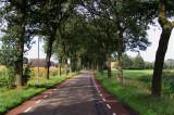 De Wilp - Oudewijk