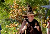 Some Sort of Wizard Friar, on his break
