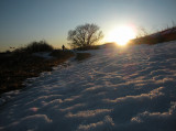 winter trail 710