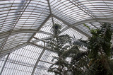 palm house roof.jpg