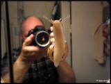 DSCF7474 Gigantisk snigel i badrummet.jpg