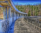 Mt Bold Dam