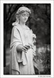 Untitled #01, Glenwood Cemetery, Houston