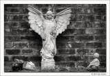Untitled #03, Glenwood Cemetery, Houston
