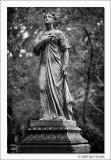 Untitled #07, Glenwood Cemetery, Houston