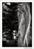 Untitled #15, Glenwood Cemetery, Houston