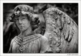 Untitled #16, Glenwood Cemetery, Houston