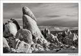 White Tank Granite, Joshua Tree National Park, California, 2012