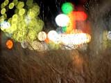 Night through the grass