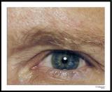 ds20051108a_0007a1wF DDS Eye.jpg