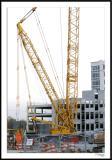 ds20051108b_0020a1wF Construction Crane.jpg