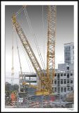 ds20051108b_0020a2wF Construction Crane.jpg