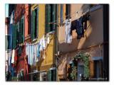 Burano - Venezia (6973)