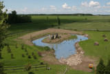 Creating a pond / Build a garden bassin / JUILLET 2009
