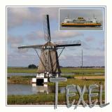 Texel 2004