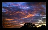 Fiery Summer Sunset