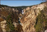 97- Yellowstone National Park