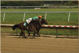 Delaware Park / Purse $40,000.00/ 3yr old and up / 6 furlong race