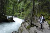 Glacier National Park - June