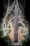 1755-My new bass....!....which is...