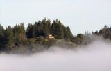 Fog lifting in Forestville
