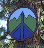 Wild Mountain Peace