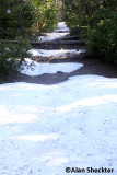 Patches of snow on June 26 between Inskip and Butte Meadows