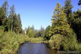 Butte Creek at Butte Meadows