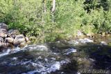 Swift-running Butte Creek between Butte Meadows and Jonesville