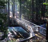 Butte Creek at Cherry Hill Campgrounds
