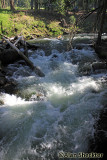 Swift-running Butte Creek at Cherry Hill Campgrounds