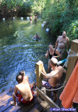 Cooling off in Comanche Creek