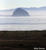 Morro Rock, from Cayucos